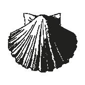Trombello Familienrezepte – Buchdesign für ein Kochbuch